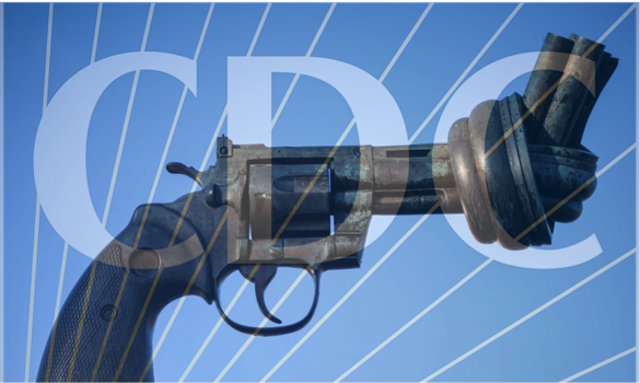 All Tied Up: The Vital Need for Research on Gun Violence